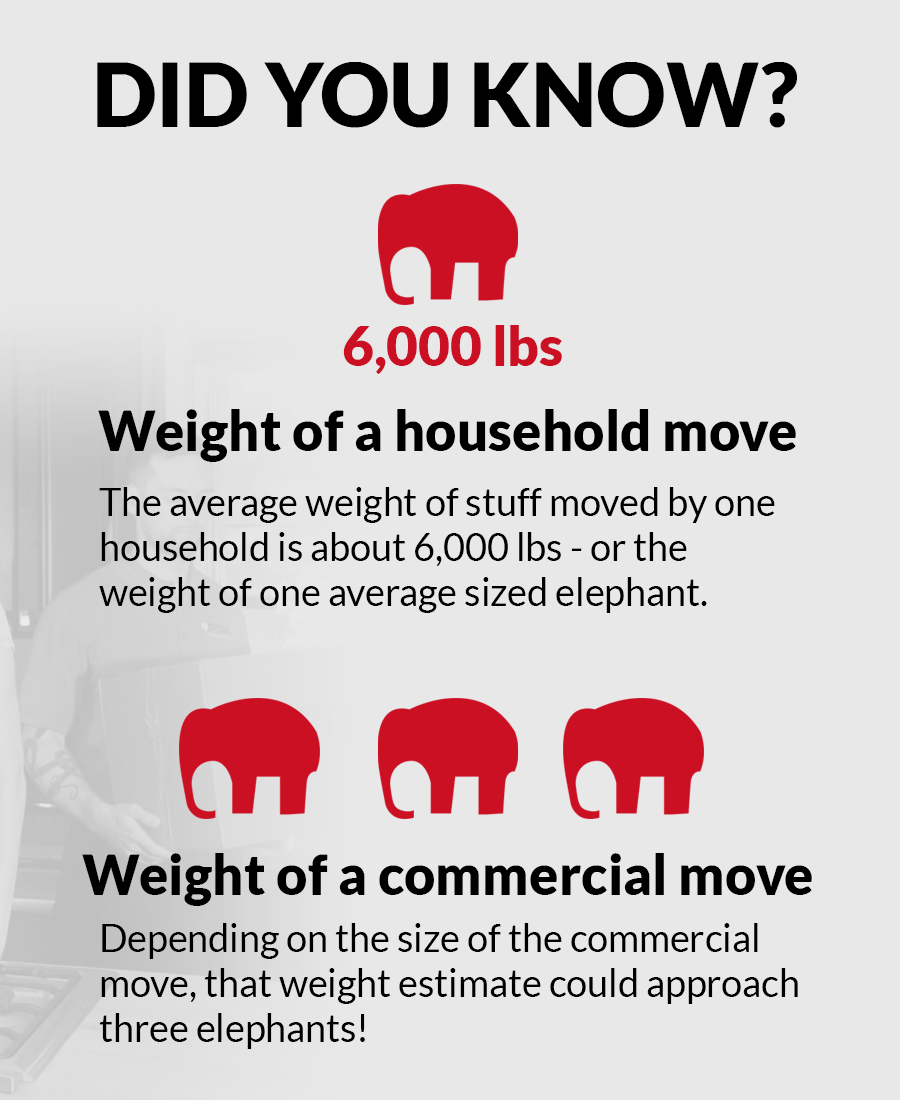fox_moving_infographic_10